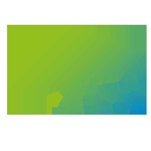 Moirin Ferlemann - Natural Horsemanship